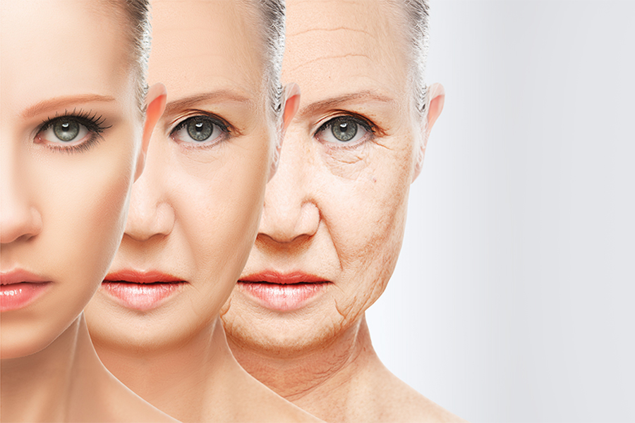 Anti-aging and skin